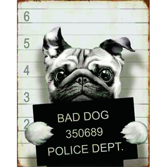 PLACA DECORATIVA 19X24 CACHORRO BAD DOG