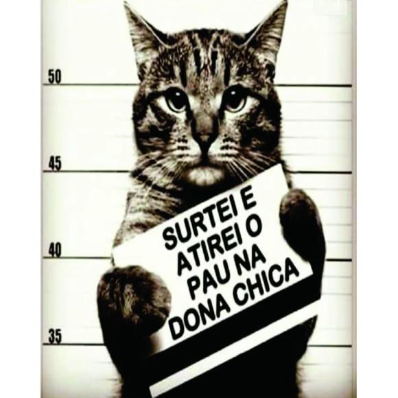 PLACA DECORATIVA 19X24 CAT SURTEI